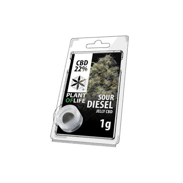 CBD 1g Jelly Sour Diesel 22%