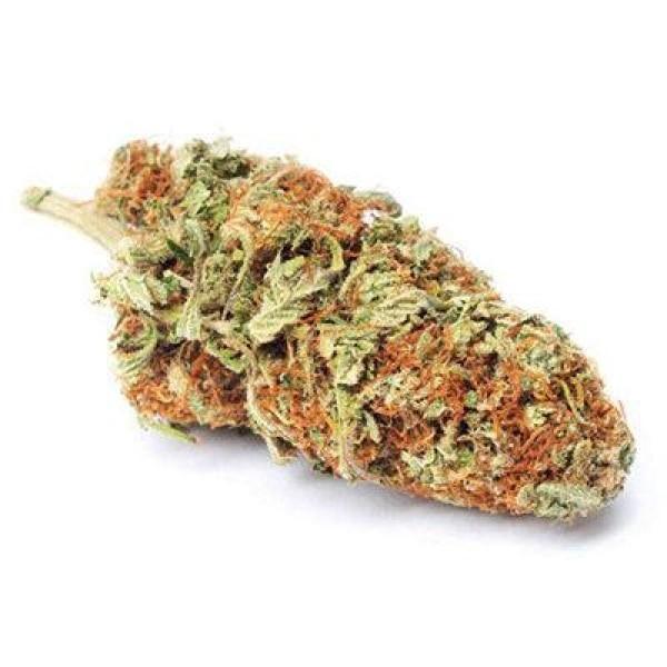 Harlequin CBD Flower Tea (12% CBD)